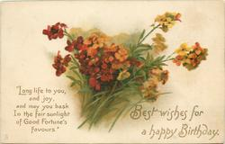 BEST WISHES FOR A HAPPY BIRTHDAY  wallflowers
