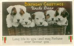 BIRTHDAY GREETINGS UNCLE DEAR   four terrier puppies in basket with mother