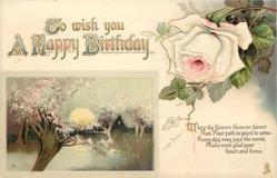 TO WISH YOU A HAPPY BIRTHDAY  rural scene, blossom, pink rose
