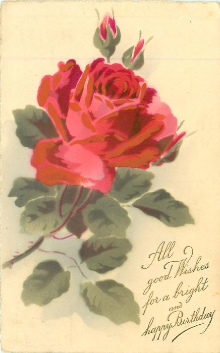 all good wishes for a bright and happy birthday red rose