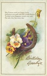 BIRTHDAY GREETINGS  horseshoe, pansies