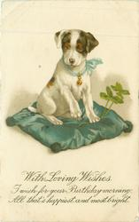WITH LOVING WISHES puppy on cushion, 4 leaf clover