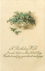 A BIRTHDAY WISH  bowl of forget-me-nots