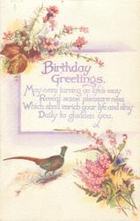 BIRTHDAY GREETINGS  pheasant, heather