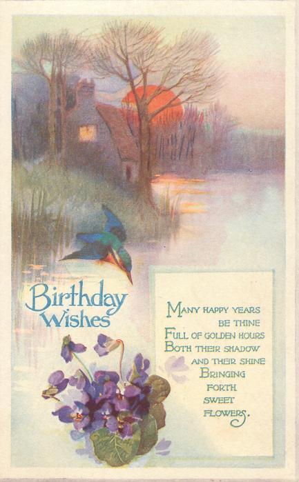 BIRTHDAY WISHES  kingfisher, violets, setting sun