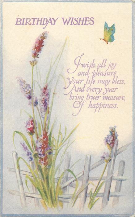 birthday wishes lavender  butterfly
