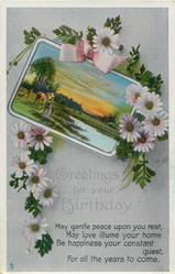 GREETINGS FOR YOUR BIRTHDAY  daisies