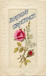 BIRTHDAY GREETINGS  large floral insert, red & white flowers