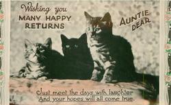 WISHING YOU MANY HAPPY RETURNS AUNTIE DEAR  three kittens