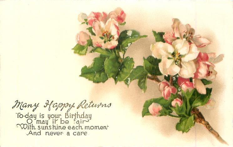 MANY HAPPY RETURNS  TODAY IS YOUR BIRTHDAY O MAY IT BE FAIR WITH SUNSHINE EACH MOMENT AND NEVER A CARE  pink and white apple blossom
