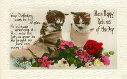 MANY HAPPY RETURNS OF THE DAY two kittens in old boots