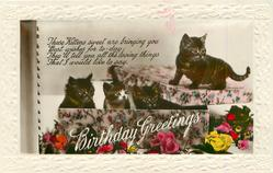 BIRTHDAY GREETINGS four kittens in & on a decorated box, roses below