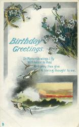 BIRTHDAY GREETINGS  forget-me-nots, seascape