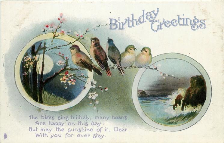 BIRTHDAY GREETINGS  blossom & birds/seascape