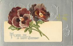 TO WISH YOU A HAPPY BIRTHDAY  pansies