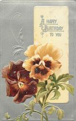 A HAPPY BIRTHDAY TO YOU  pansies