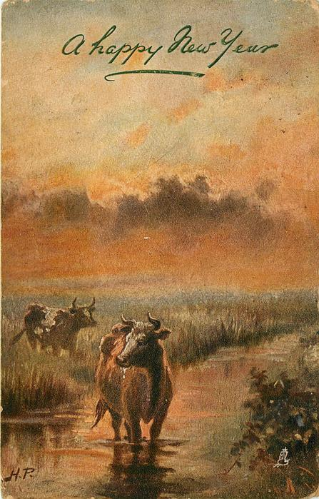 SWEET EVENING REST  cow stands in stream, another behind left in marsh