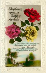WISHING YOU A HAPPY BIRTHDAY  roses above rural view