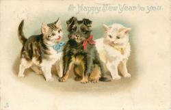 A HAPPY NEW YEAR TO YOU  puppy sits between two kittens