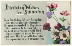 BIRTHDAY WISHES FOR SATURDAY  anemones