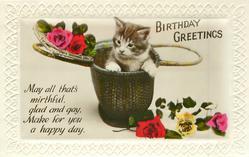 BIRTHDAY GREETINGS  kitten in basket, roses
