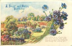 A BRIGHT AND HAPPY BIRTHDAY cornflowers & walled garden