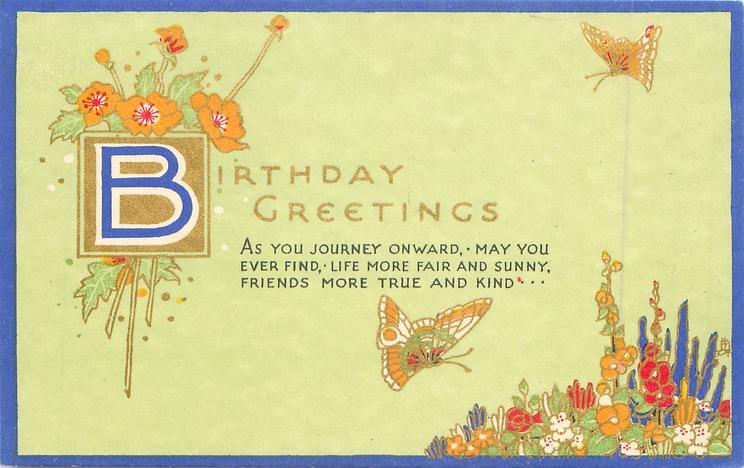 BIRTHDAY GREETINGS flowers & butterflies, illuminated B