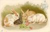 A HAPPY CHRISTMAS  four rabbits eat carrots