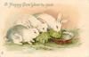 A HAPPY NEW YEAR TO YOU  three rabbits eat cabbage leaves