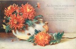 ALL HAPPINESS ATTEND YOUR YOUR BIRTHDAY  bronze  chrysanthemums in pot & on table