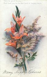 MANY HAPPY RETURNS  orange gladiolus, purple spray
