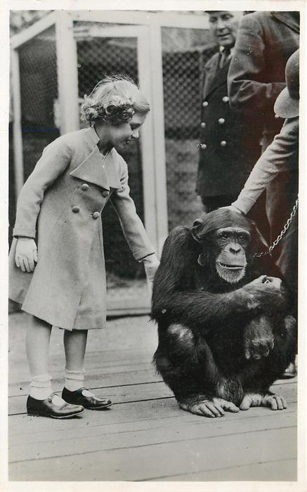 H.R.H. THE PRINCESS MARGARET ROSE AT THE ZOOLOGICAL GARDENS  with chimpanzee