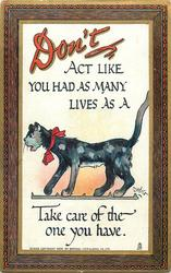 DON'T ACT LIKE YOU HAD AS MANY LIVES AS A cat TAKE CARE OF THE ONE YOU HAVE