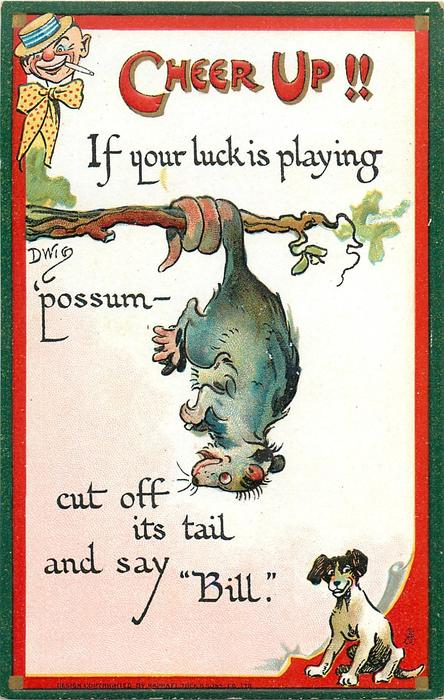 "IF YOUR LUCK IS PLAYING 'POSSUM- CUT OFF ITS TAIL AND SAY ""BILL"""