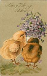 MANY HAPPY RETURNS  two chicks & violets