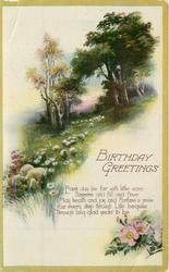 BIRTHDAY GREETINGS  rural scene, sheep
