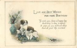 LOVE AND BEST WISHES FOR YOUR BIRTHDAY  two dogs