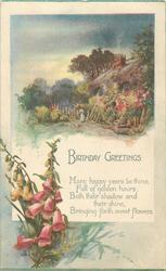 BIRTHDAY GREETINGS  rural vugnette & foxgloves