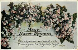 MANY HAPPY RETURNS  forget-me-nots & ivy
