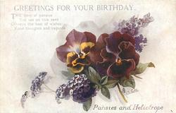 GREETINGS FOR YOUR BIRTHDAY, PANSIES AND HELIOTROPE