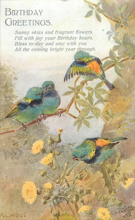 BIRTHDAY GREETINGS   finches