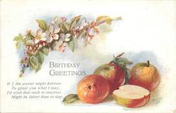 BIRTHDAY GREETINGS  apples & blossom