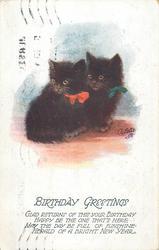 BIRTHDAY GREETINGS  two black kittens