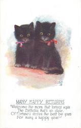MANY HAPPY RETURNS  two black kittens