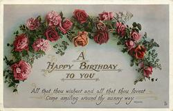 A HAPPY BIRTHDAY TO YOU  roses
