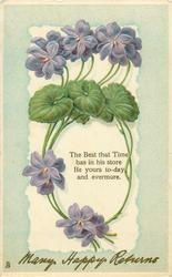 MANY HAPPY RETURNS  violets