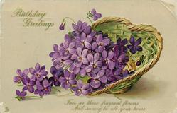 BIRTHDAY GREETINGS  violets