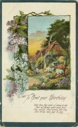 TO GREET YOUR BIRTHDAY lilac left, inset cottage & garden