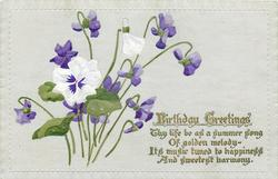 BIRTHDAY GREETINGS violets & pansy