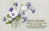 BIRTHDAY GREETINGS violets & pansy